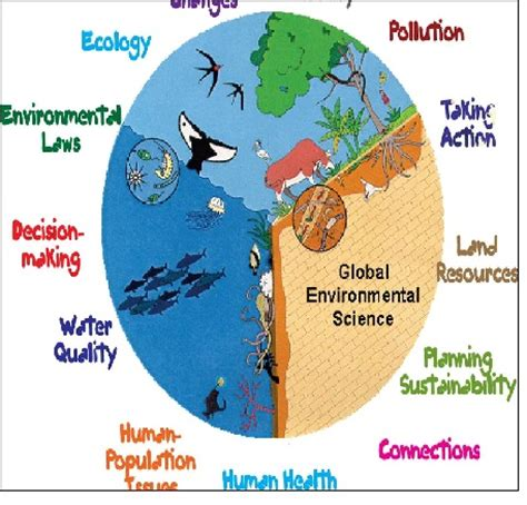 Environmental pollution research proposal